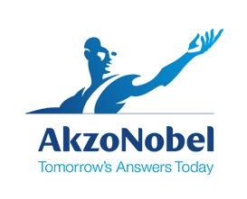 Divergent Insights- Client- Akzo Nobel