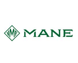 Divergent Insights- Client- Mane